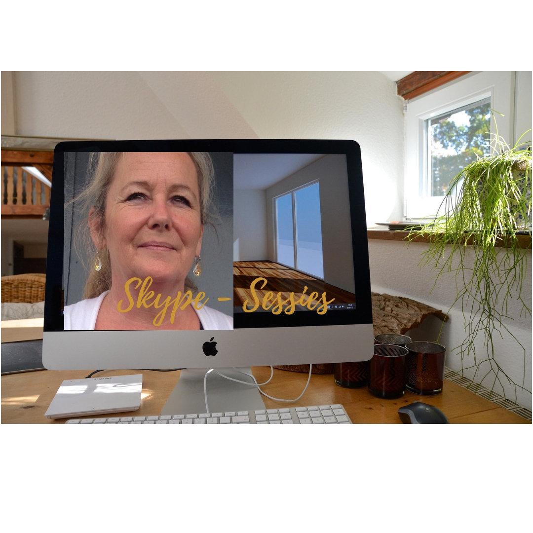 Zoom of Skype Sessie