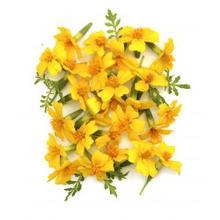 eetbare bloemen1.jpg