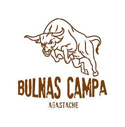 Logo Bulnas Campa Agastache.jpg