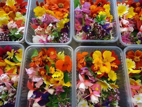 eetbare bloemen_jpg.jpg