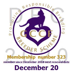0323_1220 2020 membership.png