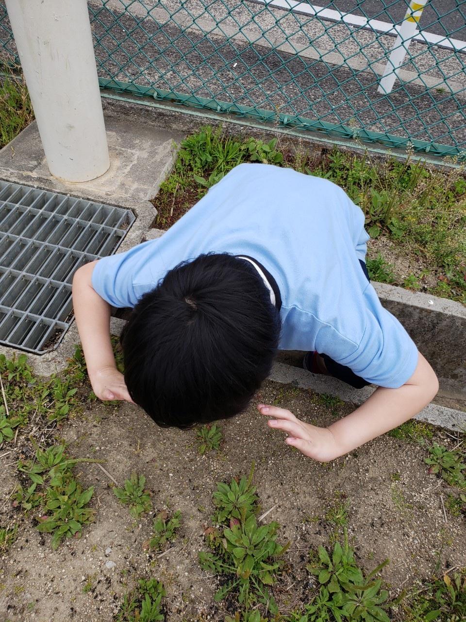 funfun_picture_066
