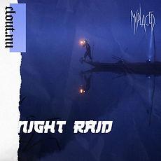 night raid.jpg