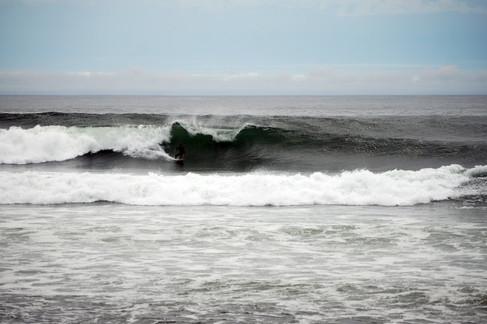 SS_Nova_Scotia_7417.jpg