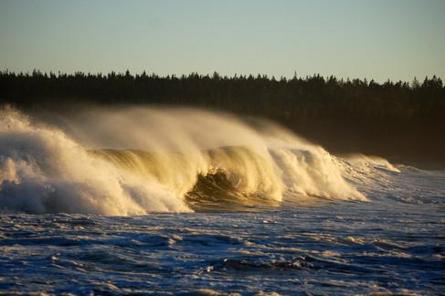 SS_Nova_Scotia_2590.jpg