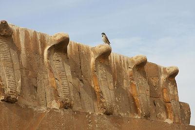 Saqqara Complex Tour