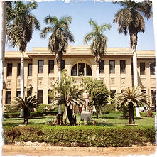 Agricultural Museum Cairo Tours Egypt Holiday