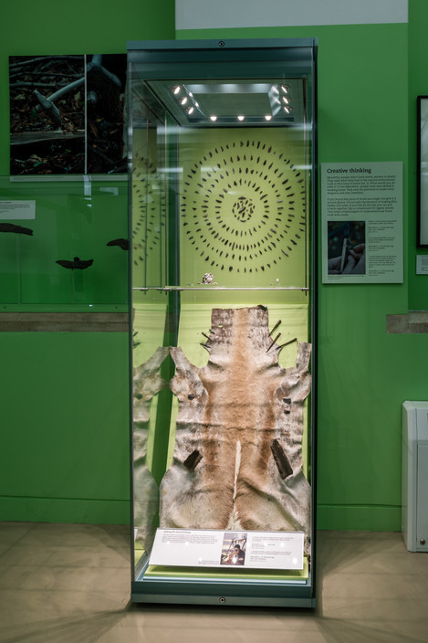 A Survival Story: Prehistoric Life at Star Carr, Museum of Archaeology and Anthropology, University of Cambridge, 2018