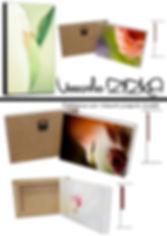 Présentation_-_VZ_Collection_Rosée.jpg
