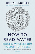 how to read water.jpg
