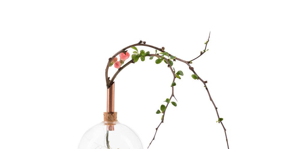 Scandinavia Form - Glasilium 透明球型花瓶(D85)