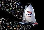 TARA OCEAN.jpg