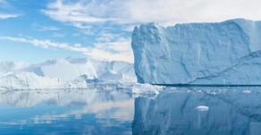 萬年冰層動物紛紛出土  科學家:寧願永遠發現不到牠們