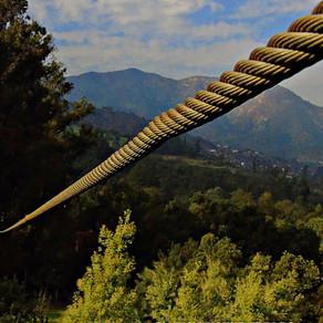 El Canopy Fue Creado En Costa Rica