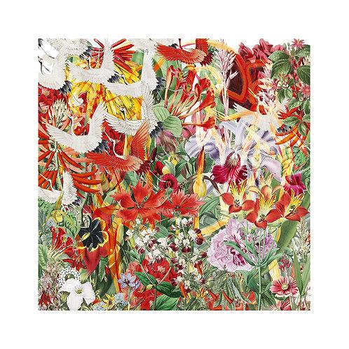 Botanical IX (print)