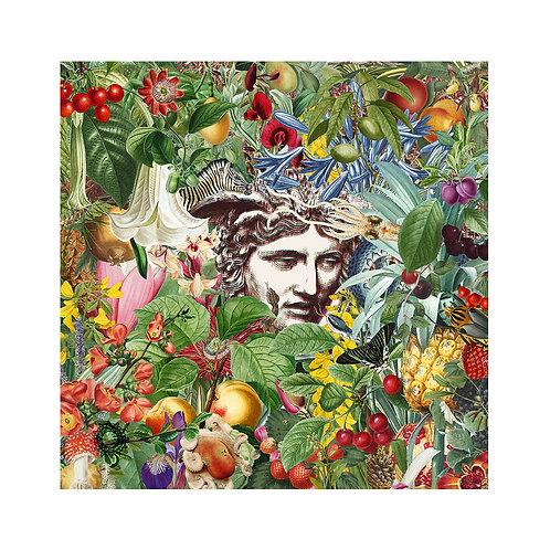 Botanical VIII (print)