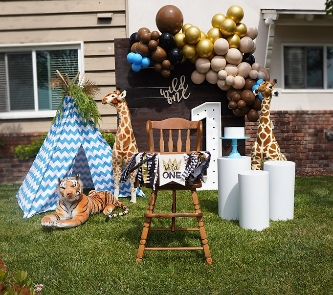 wild one 1st birthday party cakesmash party planner kids party rentals los angeles orange county