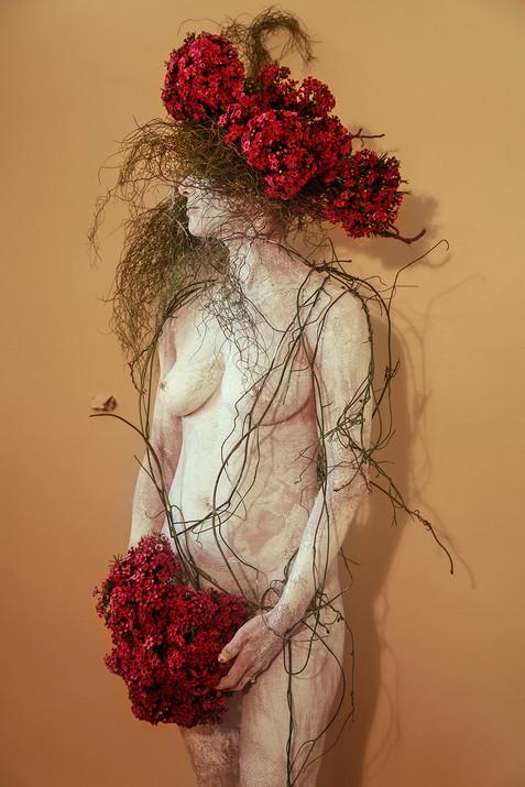 Body Domestic - Flowers