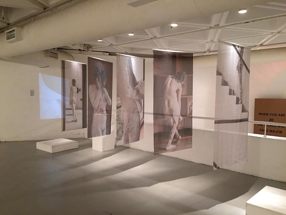 Body Domestic - Silk Prints