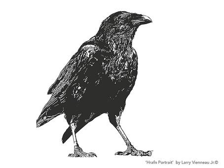 The HRAFN Ravens - Huginn and Muninn