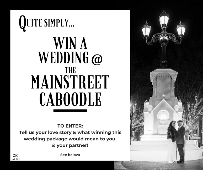 Win a Wedding Website Promo 2021.png