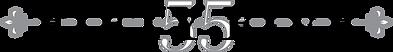 55-logo.png