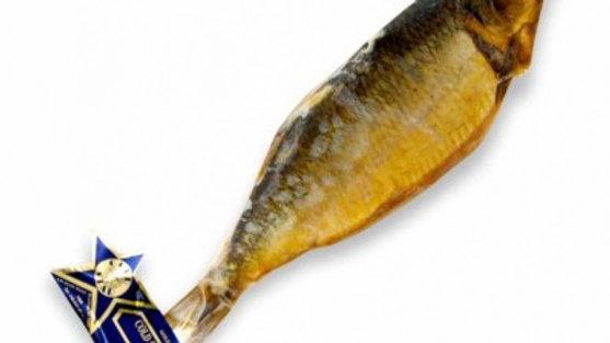 G.S Herring Fish