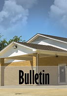 bulletin 2-01.png