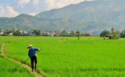 Ninh Hoa Countryside Tours