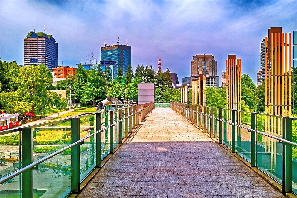 GO TO JAPAN AGENCE MARKETING JAPON