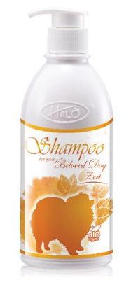 Halo Zest Shampoo ( 500ml )