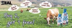 zeal_milk