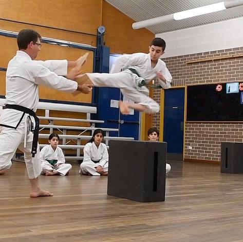 Adam Flying Side Kick 1.jpg