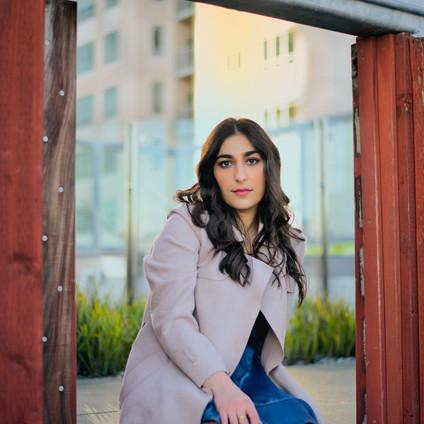 ARTIST INTERVIEW: 'SUSAN DARVISHI'