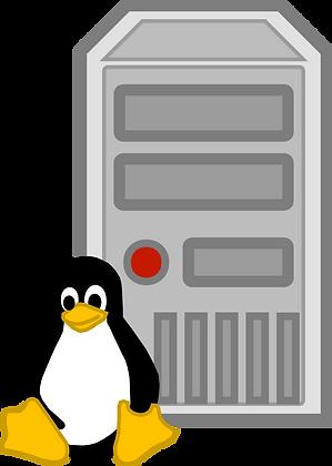 Basic Linux Server
