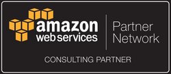 APN_Standard Consulting Partner_Dark.png