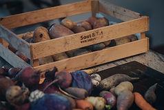Im Herbst ist Erntezeit bei Saat und Tat