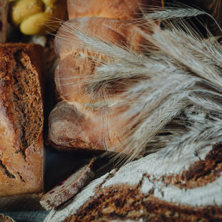 Unser Brot Saat & Tat