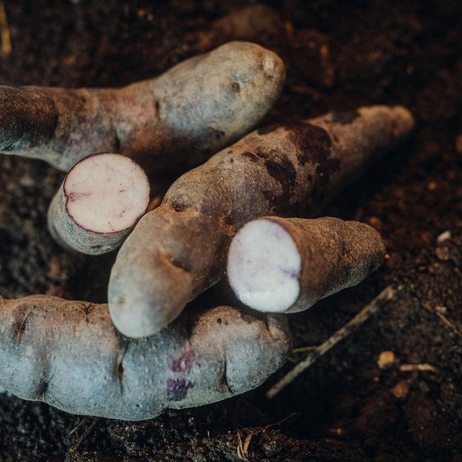 Kartoffelraritäten