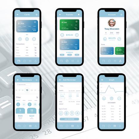 Savez Application Design