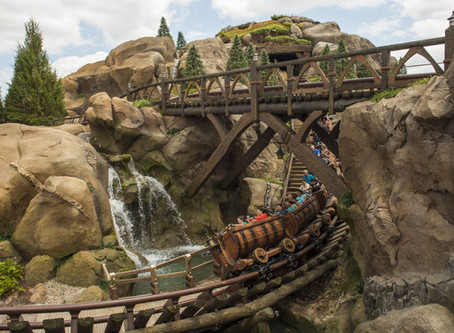 How to Take Advantage of Rider Switch at Disney World