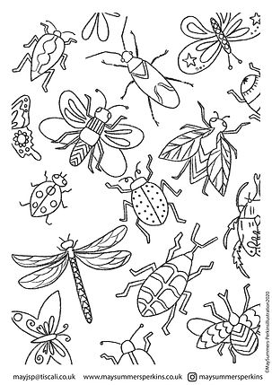 BUGS colouring in sheet.jpg