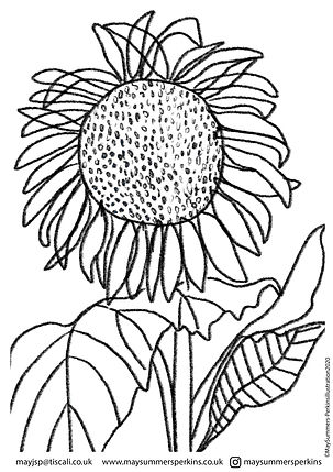 SUNFLOWER colouring in sheet.jpg