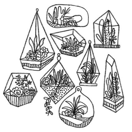 Terrarium sketch