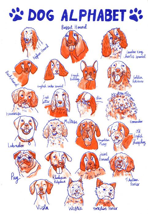 Dog A to Z risograph