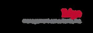 final LSE logo.png