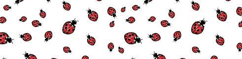 lady bug banner.jpg