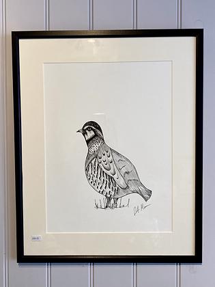 Partridge Framed Original Illustration