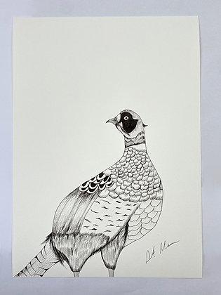 Game Bird Print