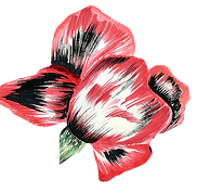 HP-flower1.png